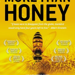 Termin: BN-Film-Matinee: More Than Honey - Öko-Modellregion Amberg-Sulzbach und Stadt Amberg